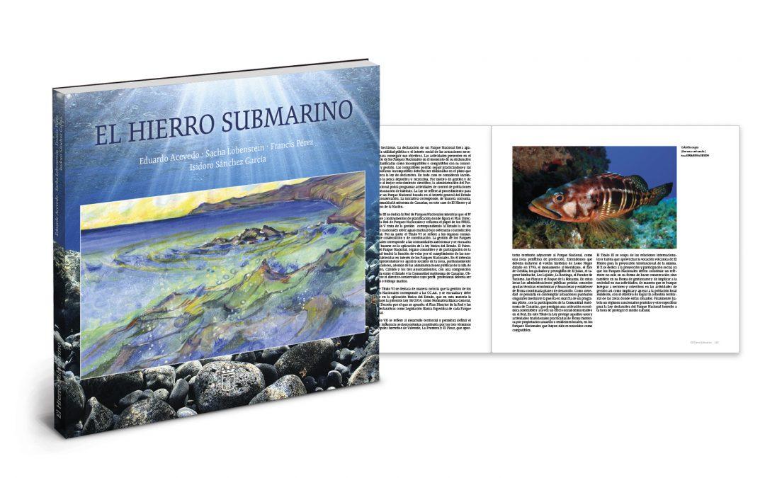 El Hierro Submarino
