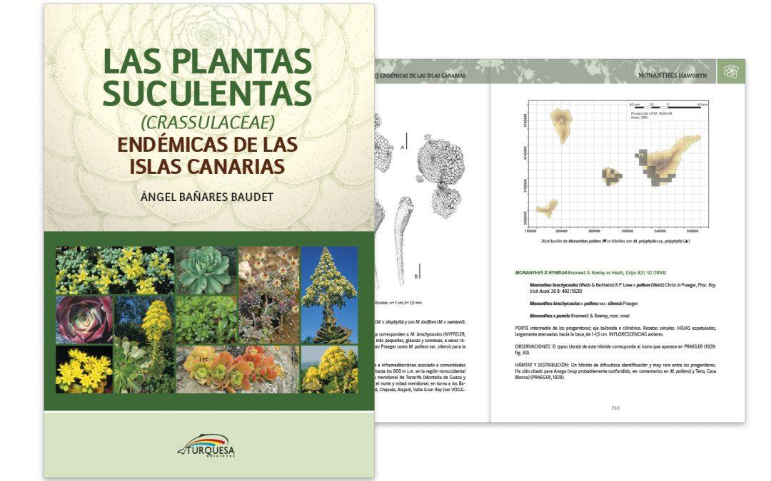 Plantas Suculentas de Canarias