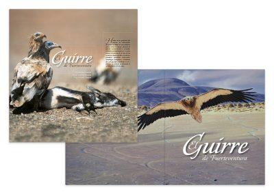 El Guirre de Fuerteventura