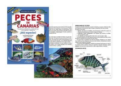 Guía práctica de los Peces de Canarias