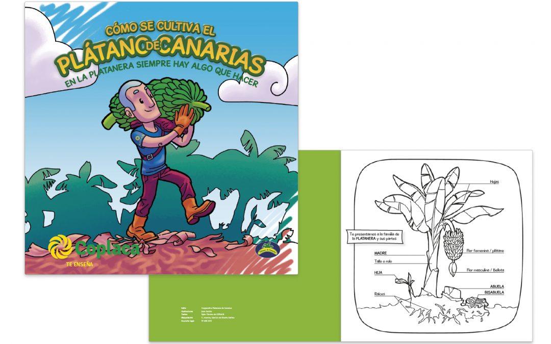 Como se Cultiva el Plátano en Canarias